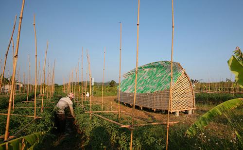 Cuerpo-Casa-sustentable-Vietnam-1
